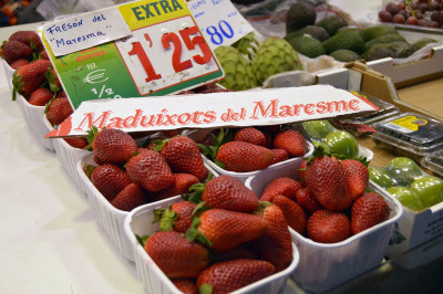 Maresme strawberries, photo by Paula Mourenza