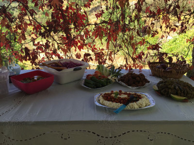 Mezes at the Sunday lunch in Wata Houb, photo by Paul Gadalla