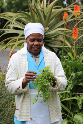 Forager Tipsy Titoti, photo by Marie Viljoen