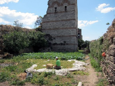 Vegetable gardens along Istanbul's Theodosian Walls, photo by Ansel Mullins