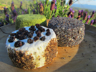 Cheese from Edremit, photo by Filiz Telek
