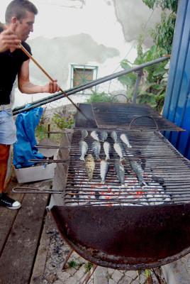 Grilling sardines for Santo António, photo by Célia Pedroso