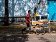 A snack vendor pushes his cart through the tree-lined streets of Coyoacán.